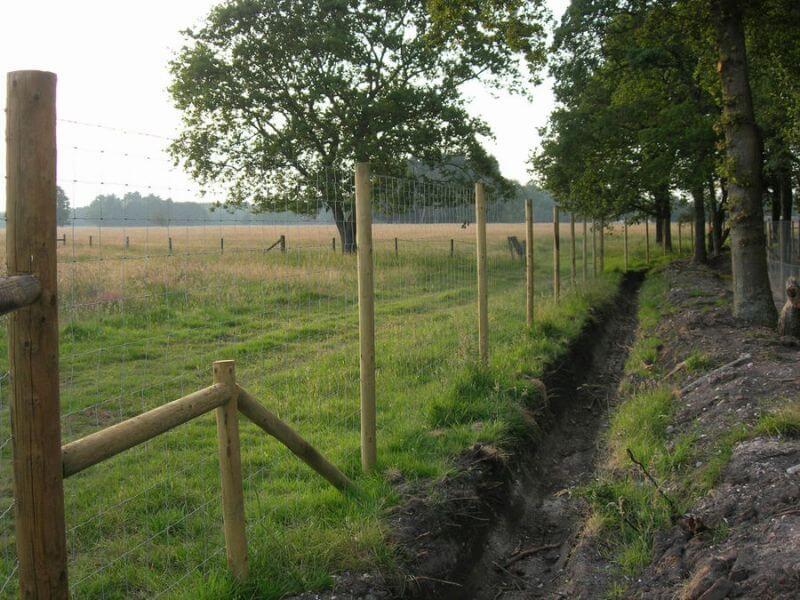 Agricultural Fencing in Dorset